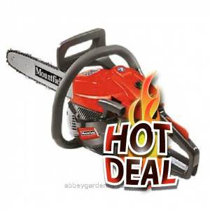 FLASH-g1-mc3616.jpg